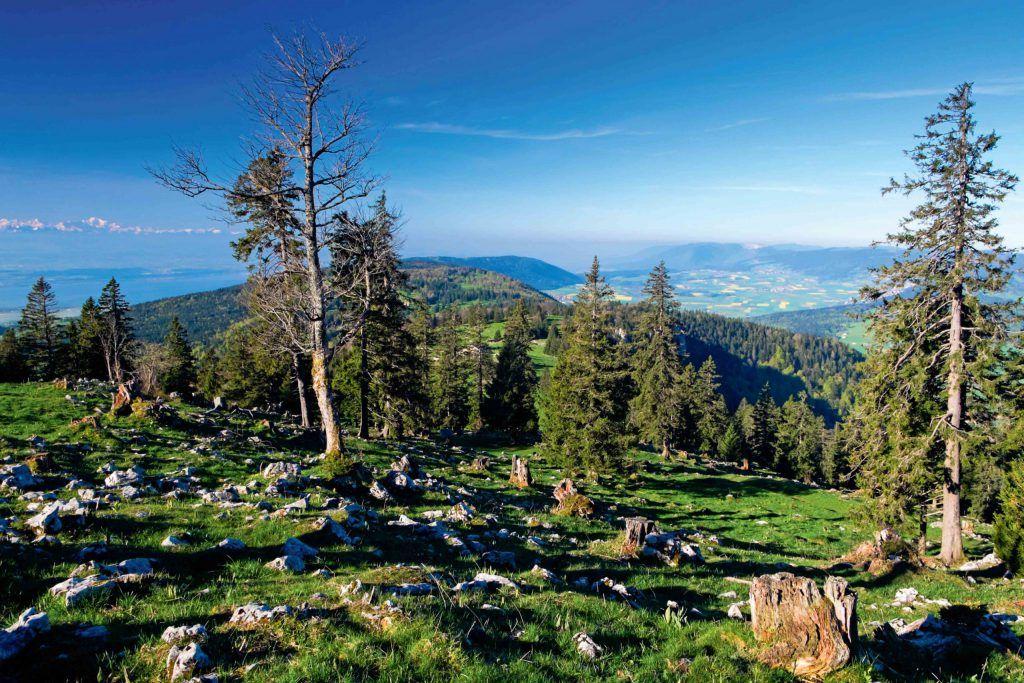 Chasseral - La Vue des Alpes - La Chaux-de-Fonds